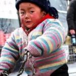 Child Care in China – Summary | Major English Grade XI