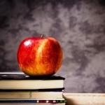 B.Ed. (TU – First Year) Exam Routine 2072 – Three Years Cycle